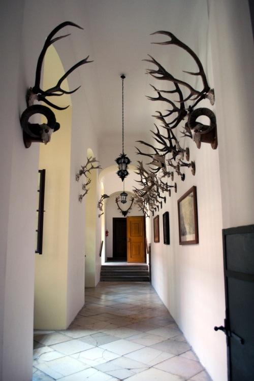 Hallway_ii